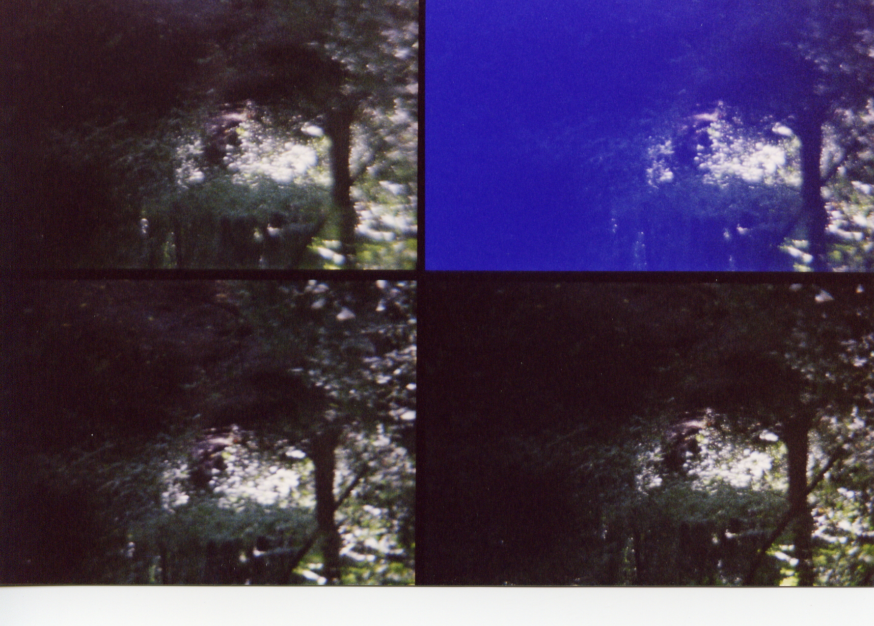Four lens camera photograph with unexplained anomaly