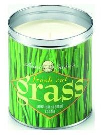 Men's Ghost Hunter Christmas Gift Idea for 2012 Fresh Cut Grass Candle Scent